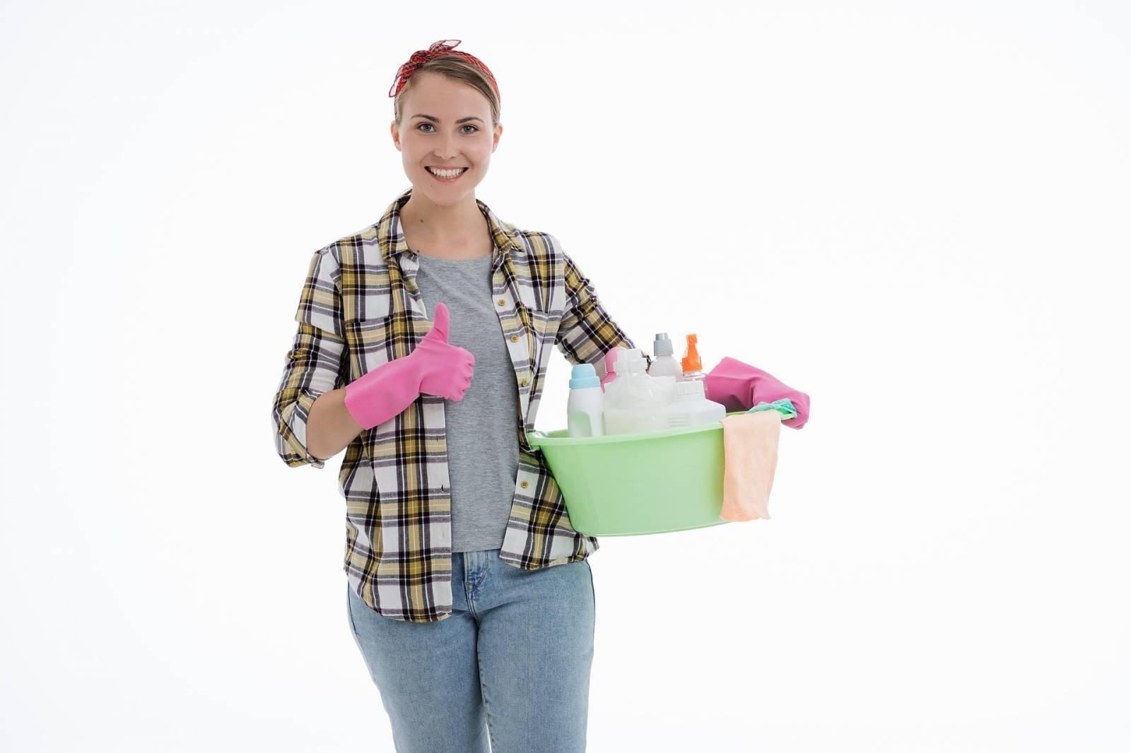 particulier cherche femme de ménage lyon